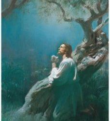Segurança no Evangelho do Senhor Jesus Cristo