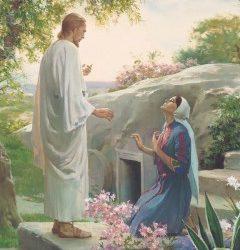 Jesus Cristo e a Nobreza Feminina